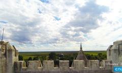 1. Still Dvorci Vojvodine 2